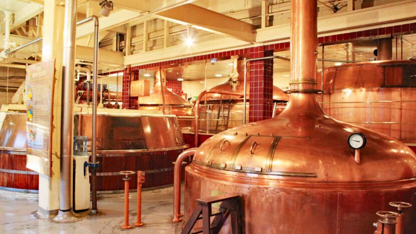 オプション:ダニーデンの地元ビール工場