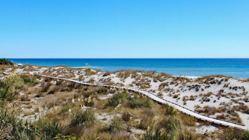 西海岸の砂丘