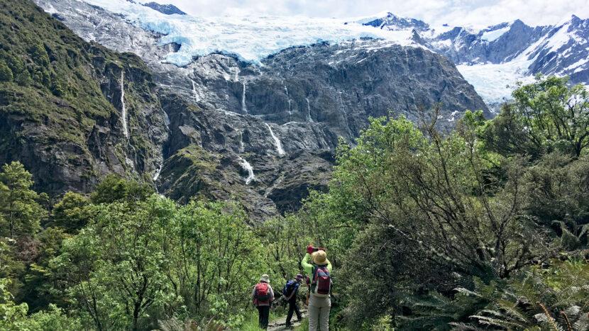 南極ブナの森を抜けた先にある絶景