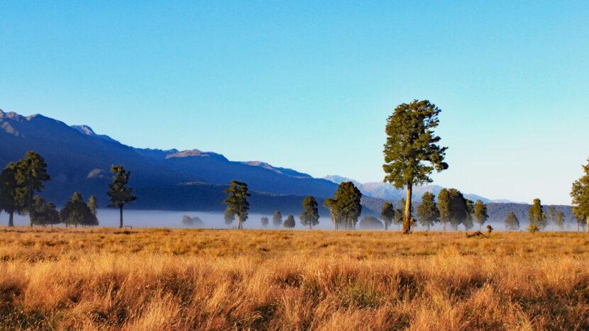 ニュージーランドの秘境