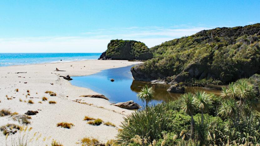 美しい西海岸の砂浜